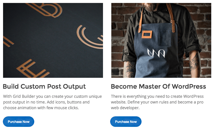 WordPress Post Grid Builder Example